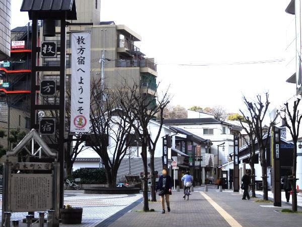 hirakatashi8