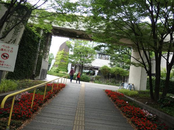 長居植物園3